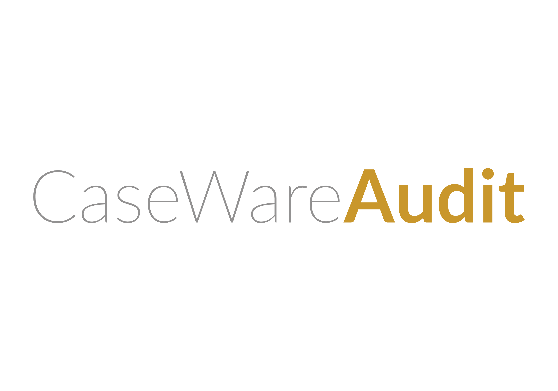 CaseWare Audit logo